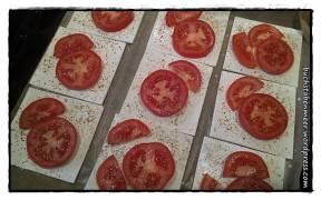 Tomatenquadrate02