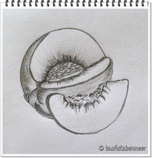 Pfirsich Zeichnung