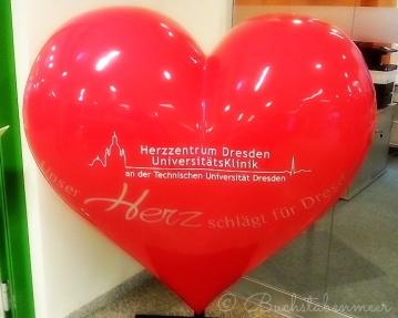 mherz142